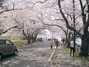 奥琵琶湖パークウェイ写真